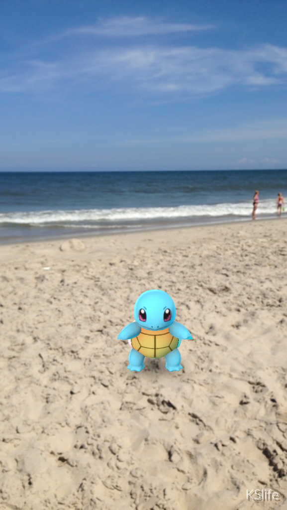 Squirtle at Nag's Head, NC