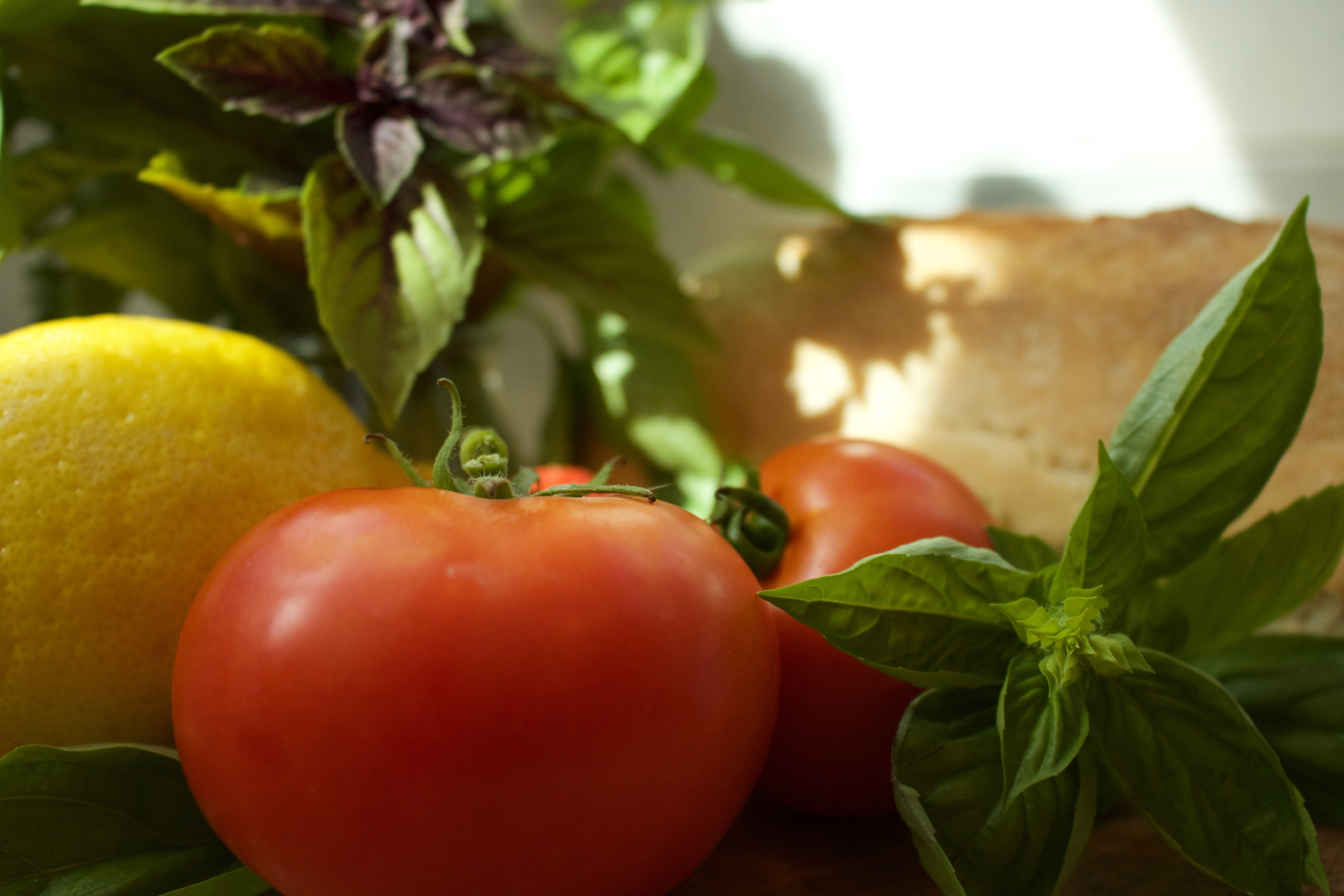 Fresh Tomatoes, Basil Pesto Caprese Bread Salad