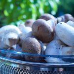 Basil Parmesan Cheese Mushroom Caps