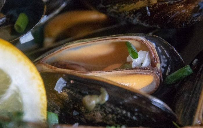 single cooked mussel